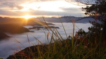 Sunrise at Mt. Kiltepan Sagada, Mt. Province.